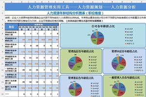 人力资源年龄结构分析图表格