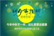 绿色食品公司中秋节宣传PPT模板