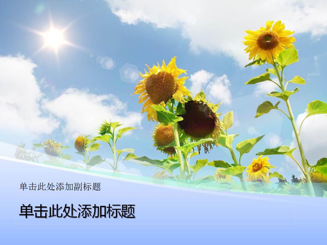 阳光向日葵背景自然ppt模板