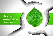 环境保护主题呵护绿叶ppt模板