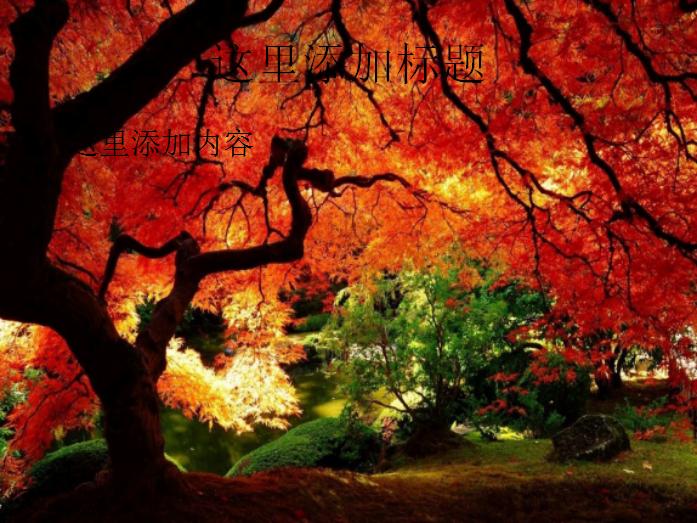 秋天自然风景PPT模板