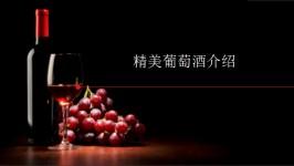 精美葡萄酒介绍PPT模板