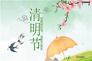 2018桃花燕子清明节PPT模板