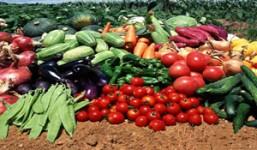农产品微商必须知晓这七条 微商农产品需要注意什么
