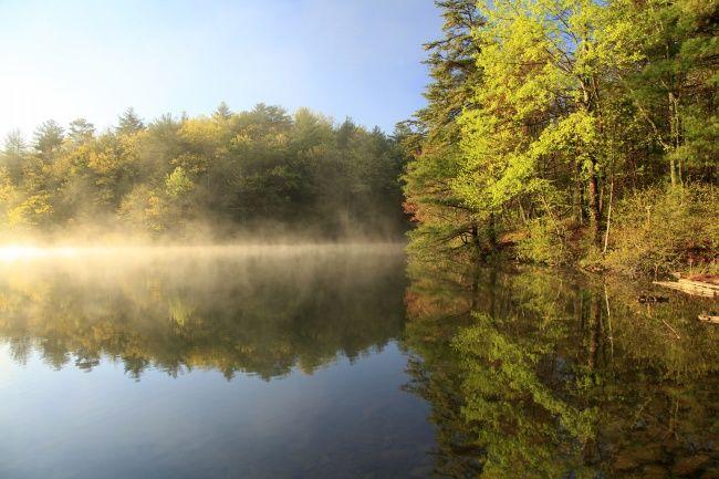 雾气朦胧的湖泊图片