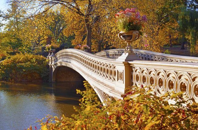 秋天的风景桌面图片