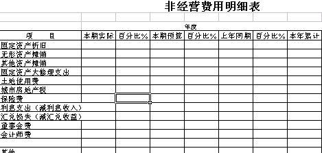 非经营费用明细表模板.xls