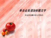 西红柿蔬菜水果PPT模板