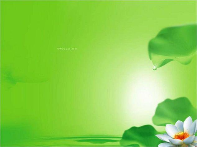绿色淡雅静物荷花ppt背景图片