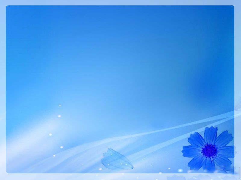 ppt模板 淡雅 蓝色花朵淡雅ppt背景图片  类别:淡雅 格式:ppt 系统