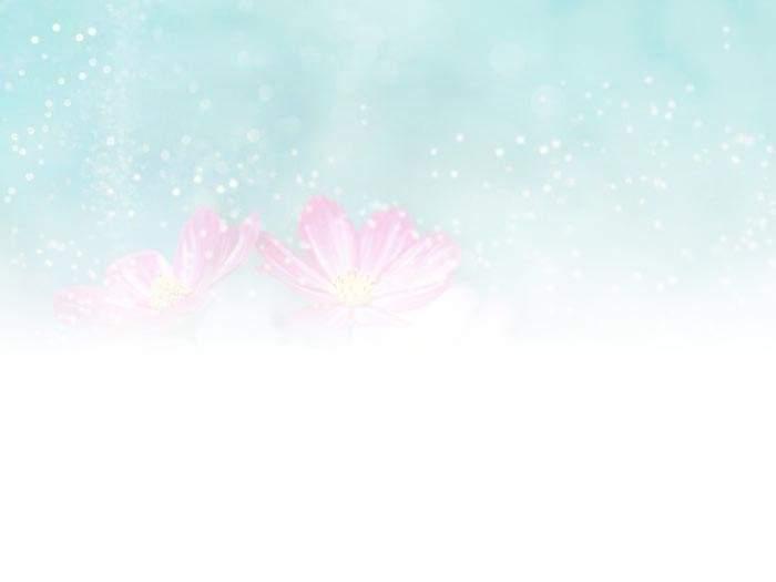 清新淡雅的花朵ppt背景图片