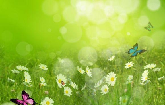 春天绿色ppt背景图片