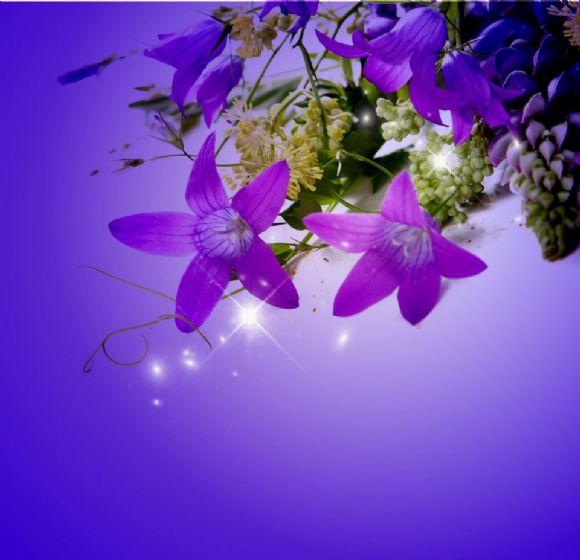 淡紫色ppt背景图片