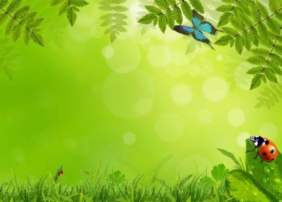 自然绿色ppt背景图片