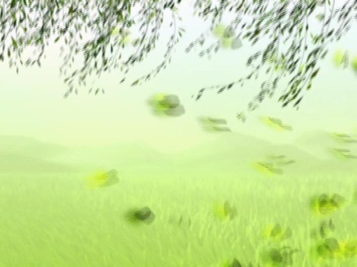 迷人荷塘风景PPT模板