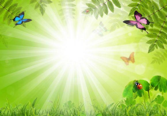 绿色大自然ppt背景图片