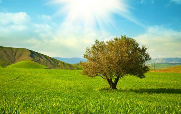 美丽自然风景PPT背景图片