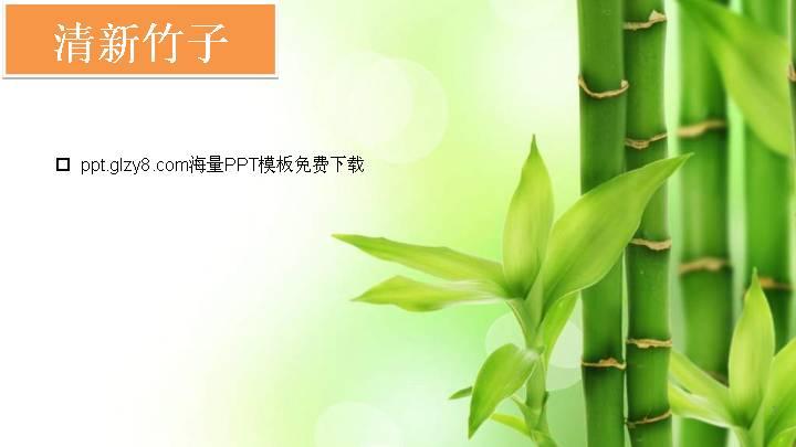 清新淡绿色的竹子ppt背景图片