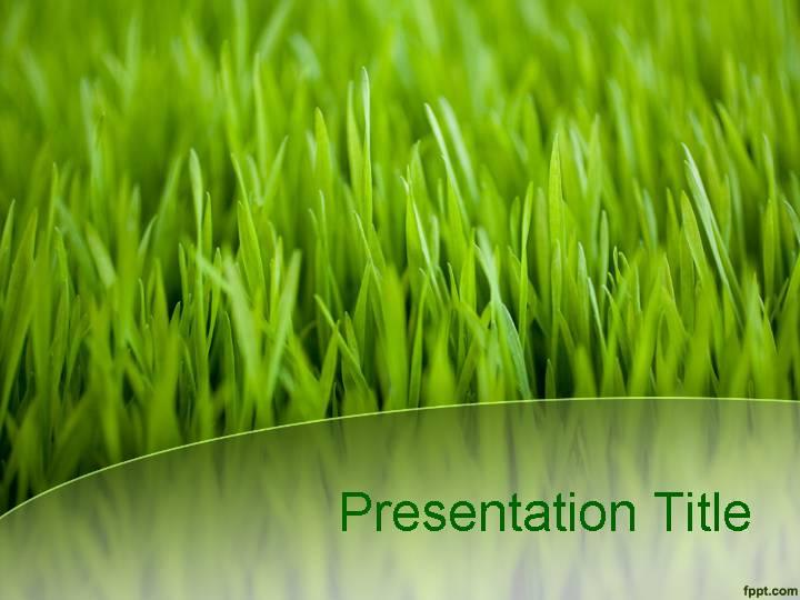 绿草青青自然PPT模板 管理资源吧