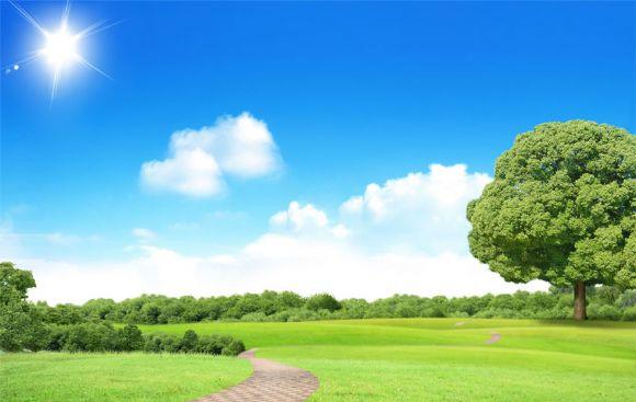 蓝天白云草地森林ppt背景图片