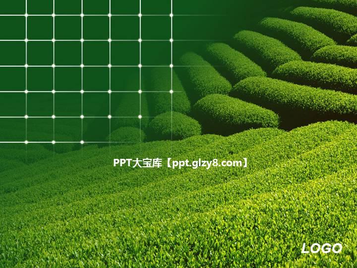 绿色茶山自然风景PPT模板下载