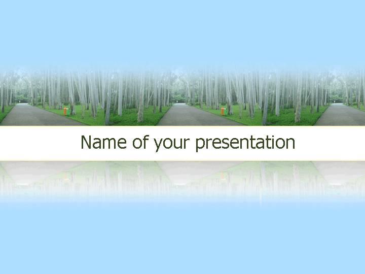 桦树林自然风景PPT模板